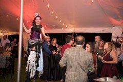 ComcastCircus-Captured by MLR Images